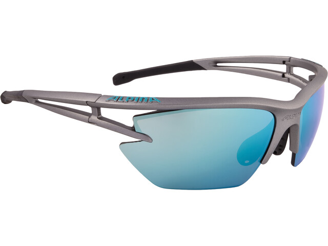 Alpina Eye-5 HR S CM+ Glasses tin matt